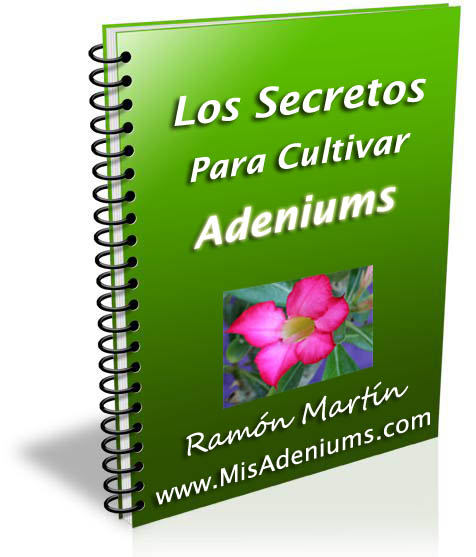 Ebook-adeniums
