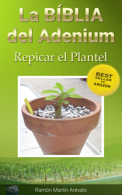 cover-repicar-best-seller copia